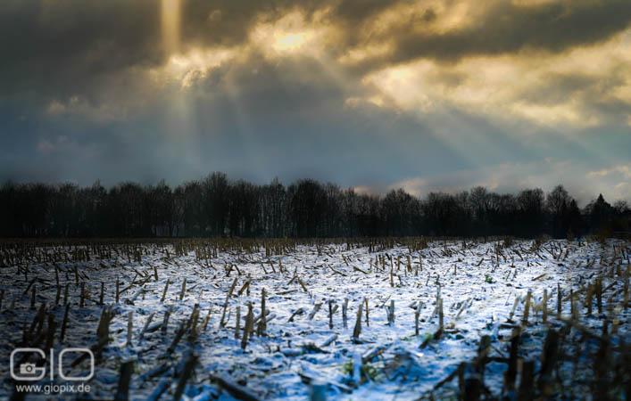 Schneelandschaft zwischen Reuchenberg und Holzheim