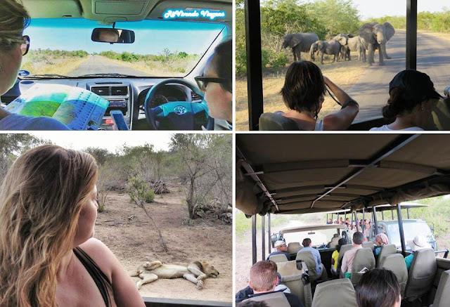 Roteiro de viagem Africa do Sul