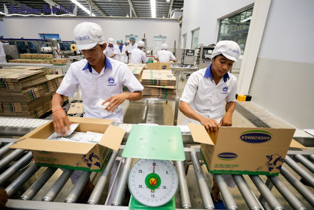 Angkor Dairy Products employees package products into boxes at the company's new factory inside the Phnom Penh Special Economic Zone yesterday morning. Hong Menea