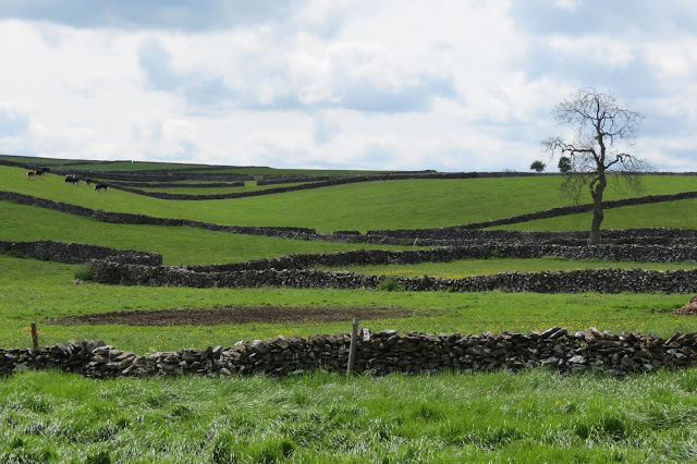 A series of rolling fields criss-crossed by old, dry stone walls.