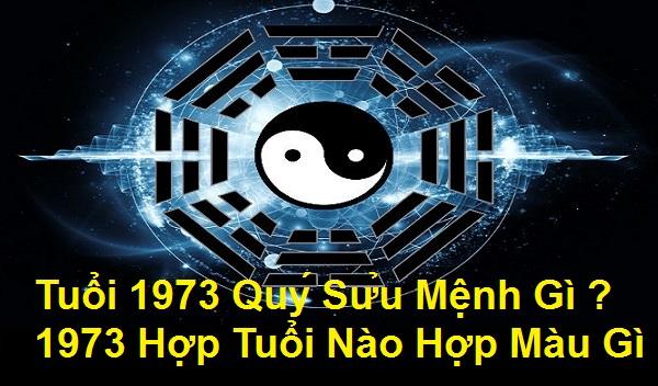 1973 MENH GI