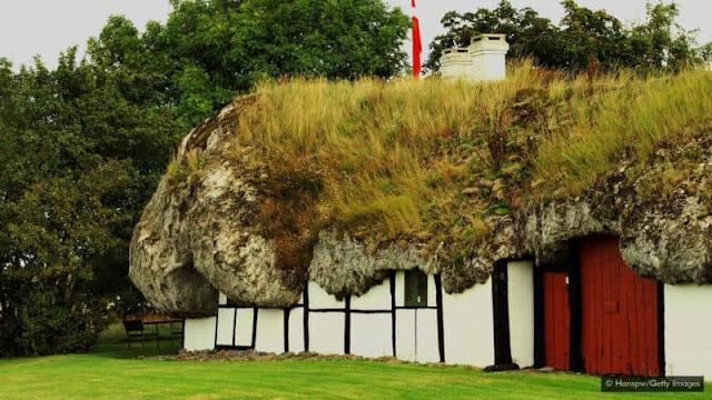 Những mái nhà làm từ 40 tấn rong biển trường tồn với thời gian