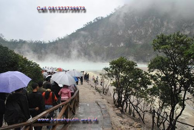 Kawah putih how to get there