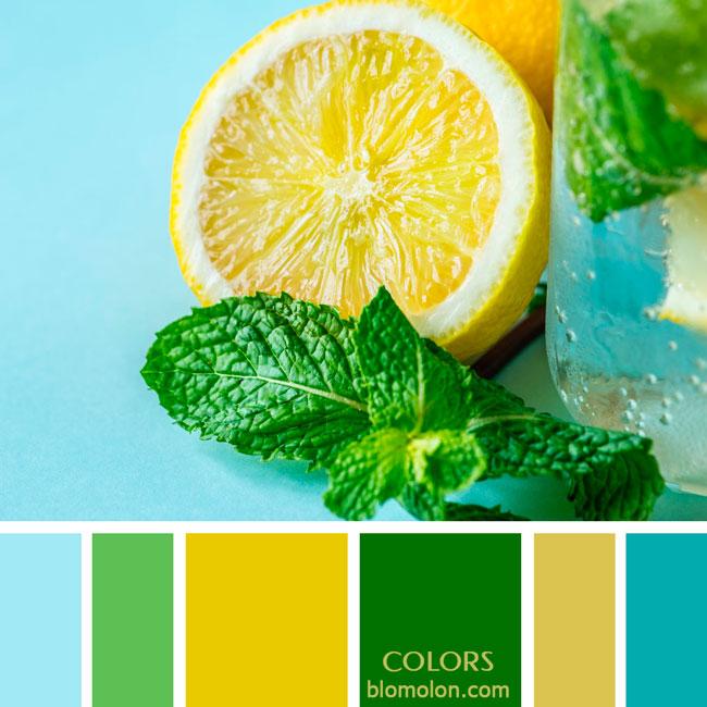 variedad_en_color_paletas_de_colores_83