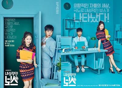 Introverted Boss / My Shy Boss - Korean Drama Review, Hero dan Heroin Drama Korea Introverted Boss, Pelakon, Yeon Woo Jin, Park Hye Soo,