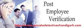 www.privatedetectivechandigarh.com