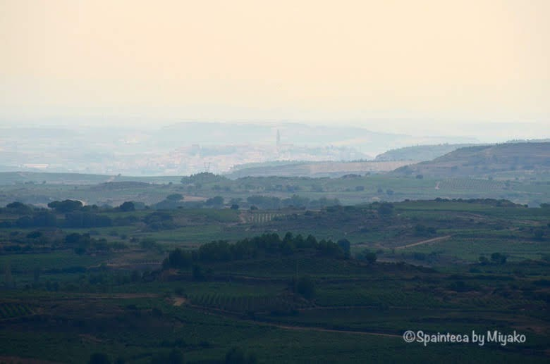 Vineyard's Landscape in La Rioja 北スペイン・リオハの遠くに見えるブリオネス村と教会の塔