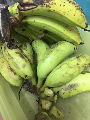Lempeng Pisang Kelapa Sedap DiMakan Mudah Disediakan, lempeng pisang kelapa