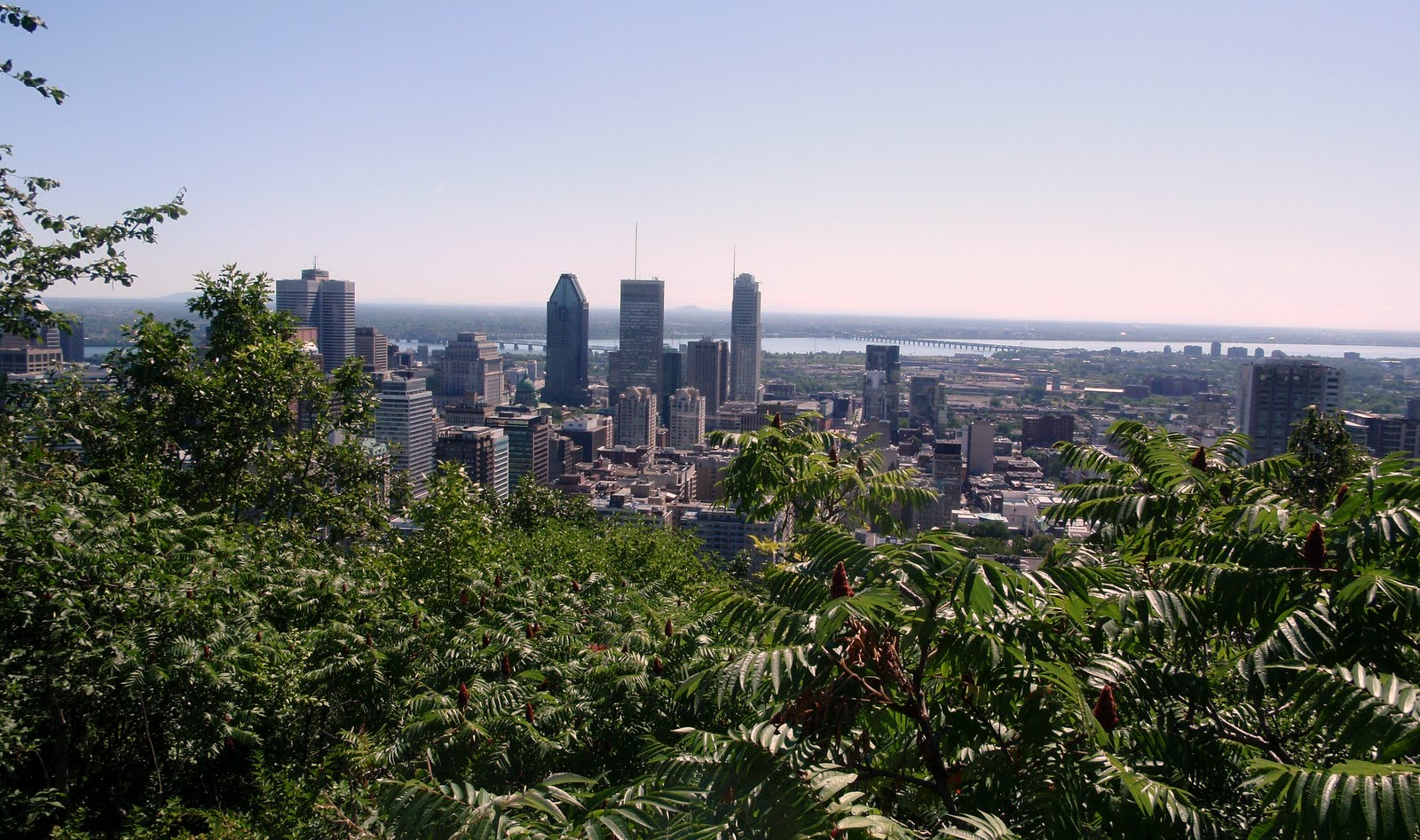 View from Mount Royal, over-looking Montreal