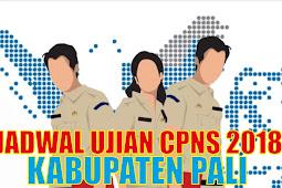 Pengumuman Jadwal Ujian CPNS 2018 Kabupaten Pali PDF