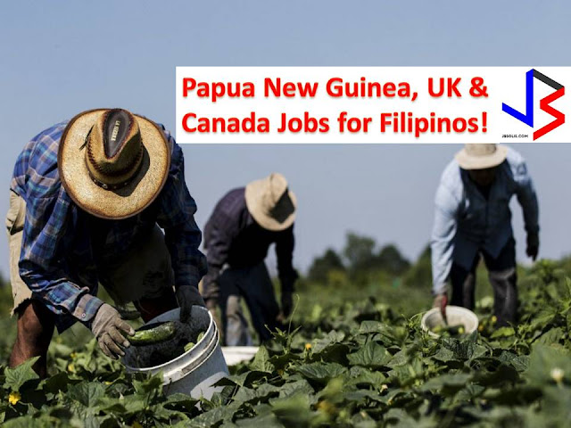 The following are jobs approved by POEA for deployment to the United Kingdom, Canada, and Papua New Guinea. Job applicants may contact the recruitment agency assigned to inquire for further information or to apply online for the job.  We are not affiliated to any of these recruitment agencies.   As per POEA, there should be no placement fee for domestic workers and seafarers. For jobs that are not exempted from placement fee, the placement fee should not exceed the one month equivalent of salary offered for the job. We encourage job applicant to report to POEA any violation of this rule.  Disclaimer: the license information of employment agency on this website might change without notice, please contact the POEA for the updated information.