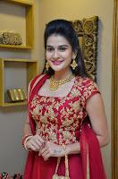 Jenny Honey in Stunning Dark Red Anarkali Dress at Splurge   Divalicious curtain raiser ~ Exclusive Celebrities Galleries 046.JPG