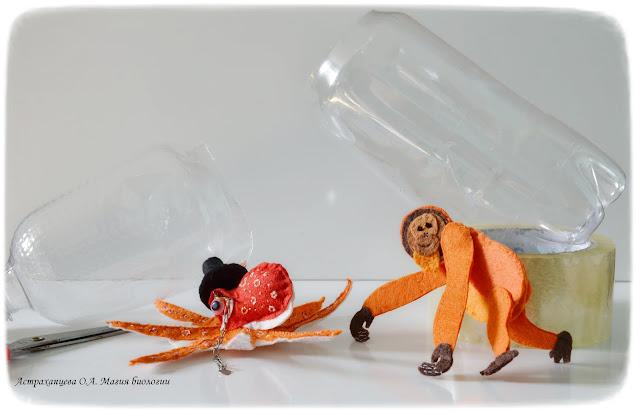 palchikovyj-teatr-orangutan-osminog-biomodelirovanie