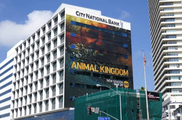 Giant Animal Kingdom season 3 billboard