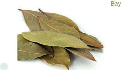 bay leaf, bay