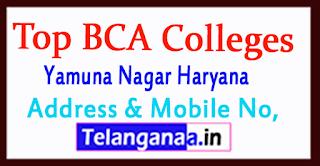 Top BCA Colleges in Yamuna Nagar Haryana
