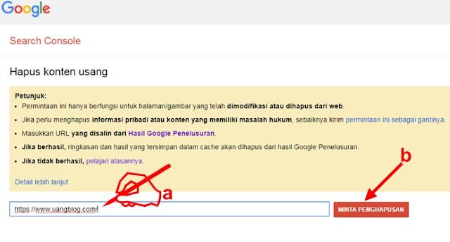 Cara Menghapus Blog dari Search Engine Agar Tidak Terindex Lagi oleh Google