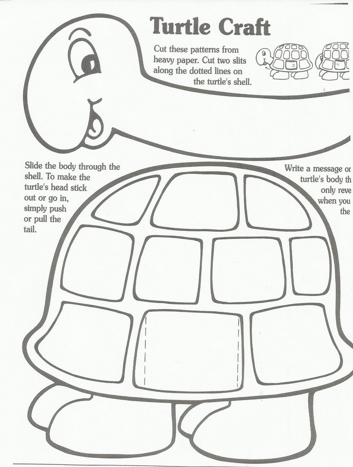 diagram turtle s head excretory system worksheet the gallery for gt sea template