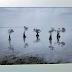 Indonesia Raih Penghargaan Tertinggi di International Photography Biennial of Guayaquil
