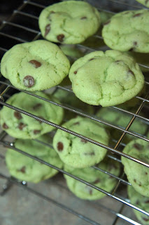 Mint Chocolate Chip Cookies: Savory Sweet and Satisfying