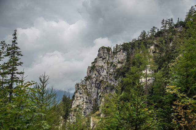 Rauschberg Rundtour Ruhpolding  Wandern Chiemgau 04