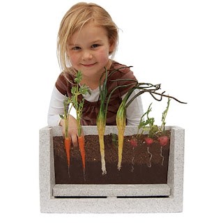 child and root vue science garden kit