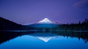 Mountain, Lake, Forest, Night, Scenery, 4K, #4.2322