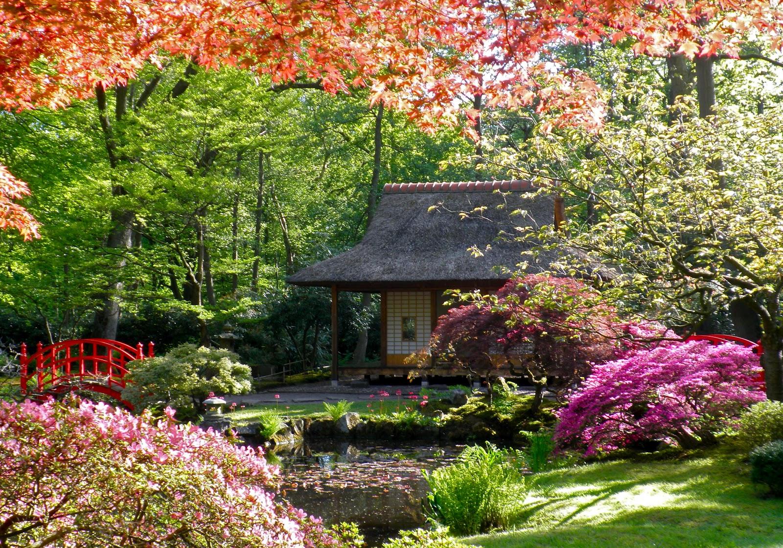 Japanese Garden Zen Bamboo Fence