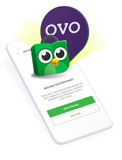 Tentang OVO Paylater