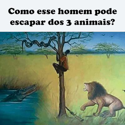Descubra: Como esse homem pode escapar dos 3 animais?