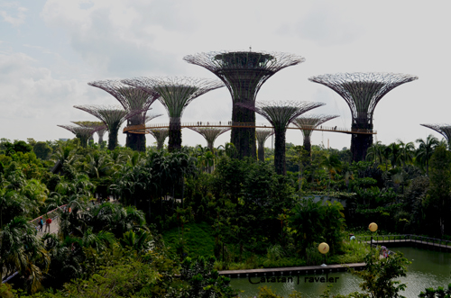Gardens by The Bay, Singapura, Traveling