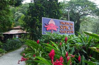 Tempat Wisata di Penang : Tropical Spice Garden