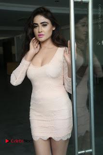 Telugu Actress Model Sony Charishta Stills in Short Dress at Rapture 2017 Grand Logo Launch  0011.JPG