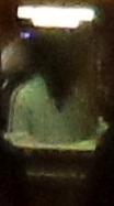 triangle head