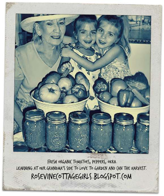 Canning food | Grandma Cottage and the Rosevine Cottage Girls