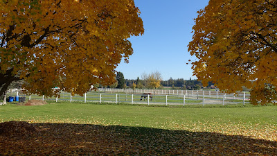 Herbstszene bei Heimenhausen