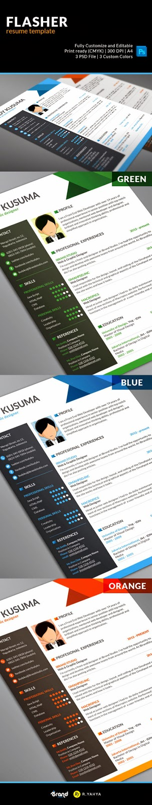 Flasher Resume PSD Template