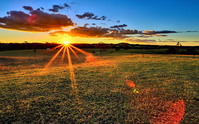 sunset field widescreen hd wallpaper