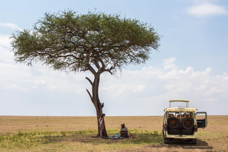 Picnic bajo la sombra de una acacia en la sabana africana