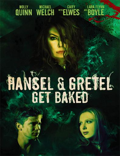 Ver Hansel y Gretel – La bruja del bosque negro (2013) Online