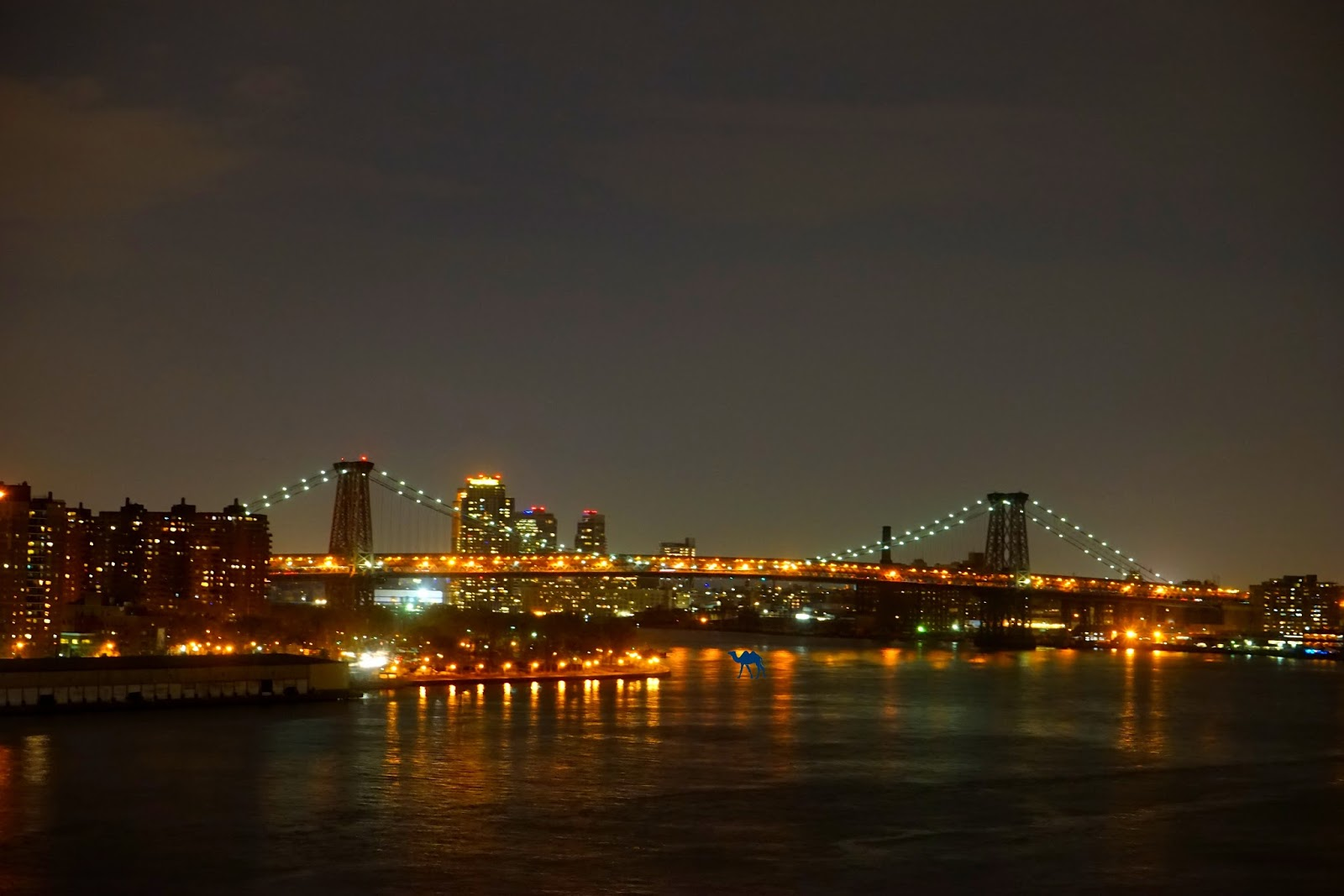 Blog Voyage New York City Pont de williamsburg by night - Le Chameau Bleu - Vacances New York USA