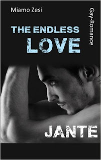 http://aryagreen.blogspot.de/2017/01/the-endless-love-jante-von-miamo-zesi.html