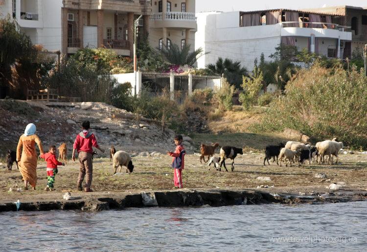 Жизнь в Луксоре течет, так же как и сотни лет назад