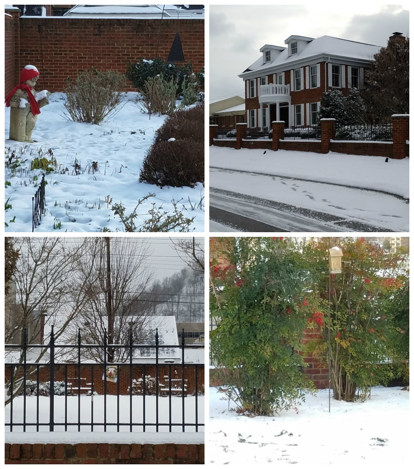 panoply state of the winter garden 2017