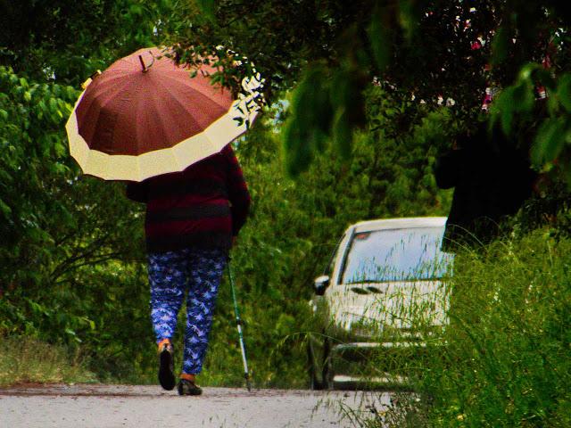 Lloviendo con paraguas