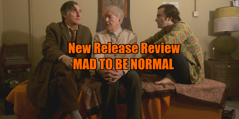 mad to be normal review