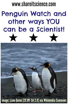 http://www.shareitscience.com/2014/10/penguinwatch-and-other-ways-you-can-be.html