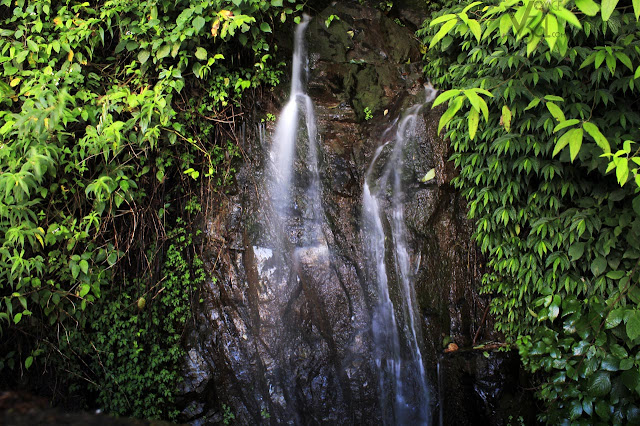 Roadside waterfalls on the Ooty gudalur highway