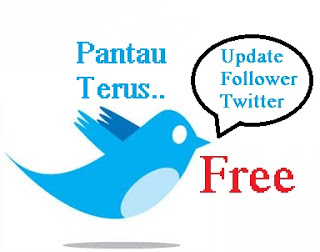 Download Gratis Mass Follow Twitter Terbaru 2013 - Tutorial