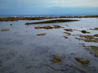 http://contarenbreve.blogspot.com.es/2016/12/playa.html - paisaje de playa